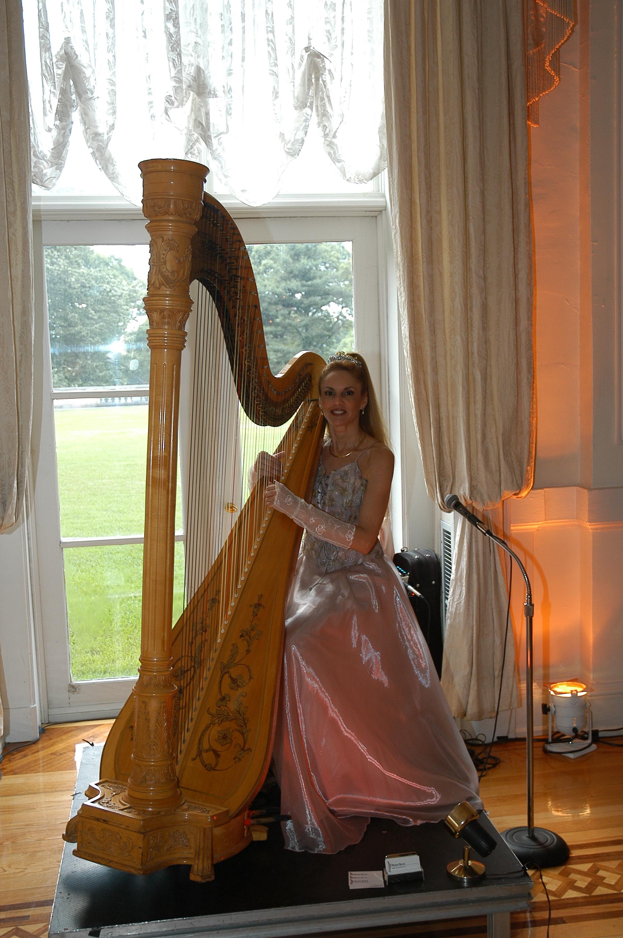 Harp ( vibe).JPG