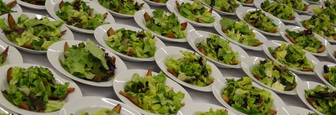 The best appetizing salads available for Bar & Bat Mitzvah events