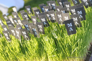 Eco friendly Wedding seating cards for outdoor wedding in New York